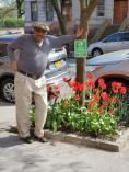 Tulips 2019 - Gary McNeil - 439 W 162nd